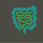 kишечная микробиота